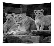 Lioness And Cubs Tapestry