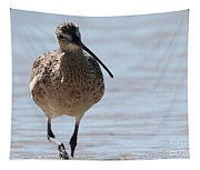 Long-billed Curlew Tapestry