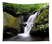 Lower Grotto Falls Tapestry