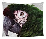 Macaw Tapestry
