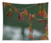Maple Red Samaras Tapestry