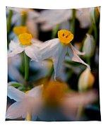 Narcissus Tazetta Tapestry
