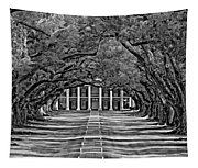 Oak Alley Bw Tapestry