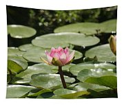 1 Open Pink Lily And 1 Opening... Tapestry