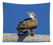 Osprey With Fish In Talons Tapestry