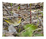 Palm Warbler Tapestry