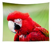 Parrot Tapestry