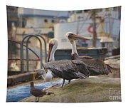 Pelican Duo Tapestry