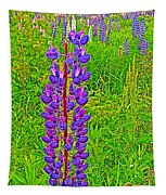 Purple Lupine On Campobello Island-nb Tapestry