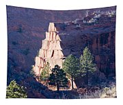 Red Rocks Open Space Tapestry