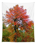 Red Tree Tapestry