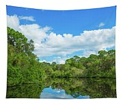 Reflection Of Trees And Clouds In South Tapestry