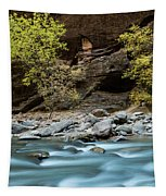 River Flowing Through Rocks, Zion Tapestry