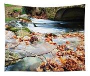 River Flowing Under Stone Bridge Tapestry