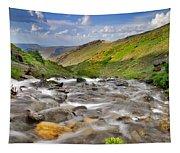 River San Juan  Tapestry