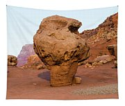 Rock Formations In A Desert, Vermilion Tapestry