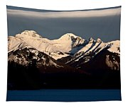 Rocky Mountains In Winter Tapestry
