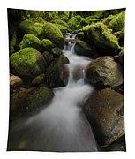 Ruckel Creek  Oregon, United States Tapestry