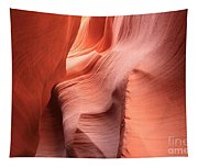 Sea Of Sandstone Tapestry