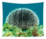 Sea Urchin Tapestry
