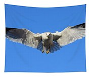 Seagull In Flight Tapestry