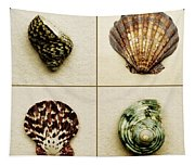 Seashell Composite Tapestry