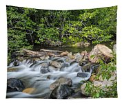 Silky Water Tapestry