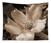 Single Portulaca Tapestry