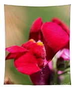 Snapdragon Named Red Chimes Tapestry