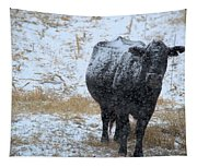 Snow Angus Tapestry
