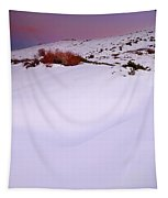 Soft Snow At Sunset Tapestry