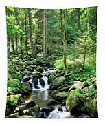 Stream Flowing Through A Forest, Usa Tapestry