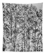 Summer Forest Trees Tapestry