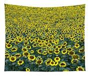 Sunflower Nirvana 13 Tapestry