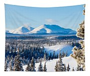 Taiga Winter Snow Landscape Yukon Territory Canada Tapestry