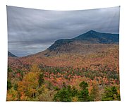 Tapestry Of Fall Colors Tapestry