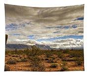 The Desert Southwest  Tapestry