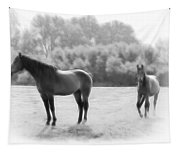 The Stallion Tapestry