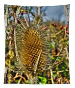 Thistle On Sunny Autumn Day Tapestry