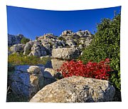 Torcal Tapestry