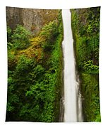 Tunnel Falls  Tapestry