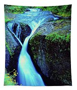 Twister Falls  Tapestry