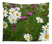 View Of Daisy Flowers In Meadow Tapestry