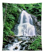 Waterfall In A Forest, Moss Glen Falls Tapestry
