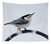 White-breasted Nuthatch Tapestry