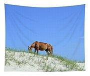 Wild Horses Of Corolla Tapestry