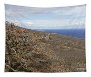 Wiliwili Flowers - Erythrina Sandwicensis - Kahikinui Maui Hawaii Tapestry