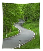 Winding Road In The Woods Tapestry