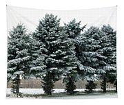 Winter Wonderland  Tapestry