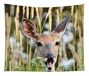 Yawn Tapestry